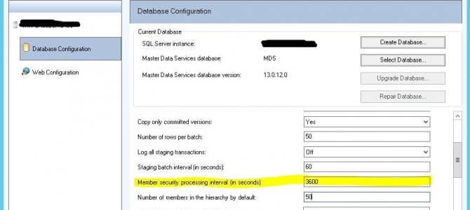 3 practical tips for Master Data Services 2016 permissions configuration